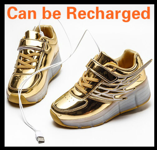 Light Up Shoes Boys Girls Kids Roller Skates Sneakers USB Charge LED Wheeled Skate 19
